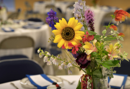 Screen Shot 2018-06-11 at 9.49.35 AM